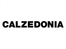 logo-carrefour-calzedonia
