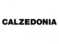 logo-carrefour-calzedonia-232x174